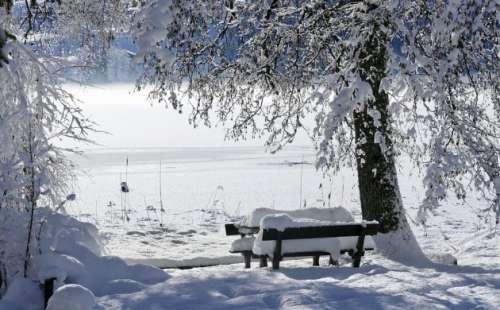Winter Top Angebot
